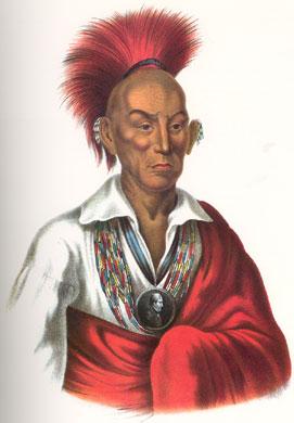 Chief black hawk3